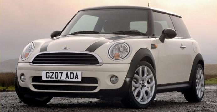 mini cooper The Largest Animal Ever