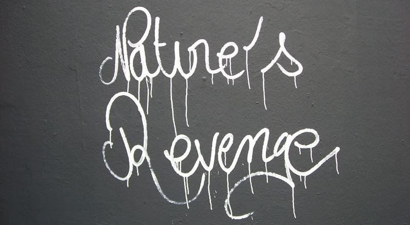natures revenge series by ludo street art THE WAR IS ON: Natures Revenge by Ludo