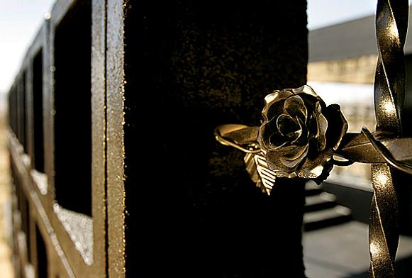 rosa muerta dead rose black rose What Happens When a Punk Rocker Designs a Desert Home?