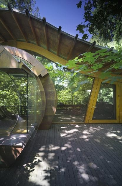 tree-house-deck-patio-design