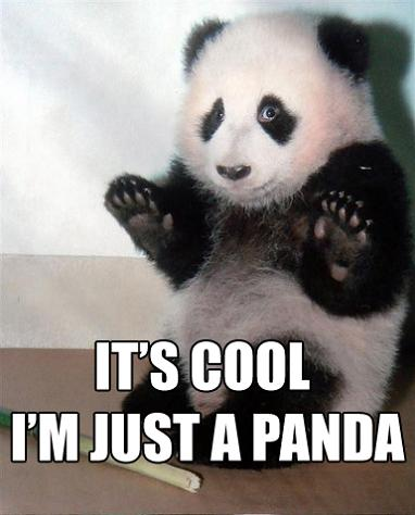 its cool im just a panda 11 Reasons why the Bronze goes to... Pandas!