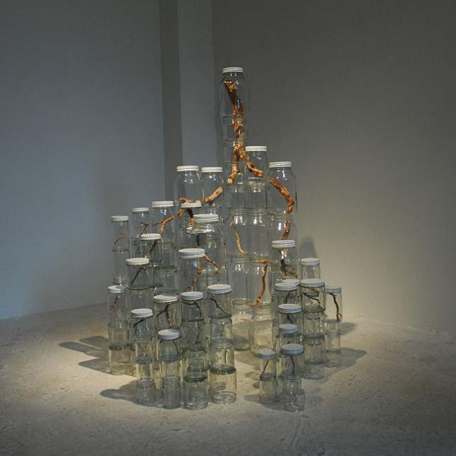 tree branches in jars art Branching Out: Tree Art by Naoko Ito