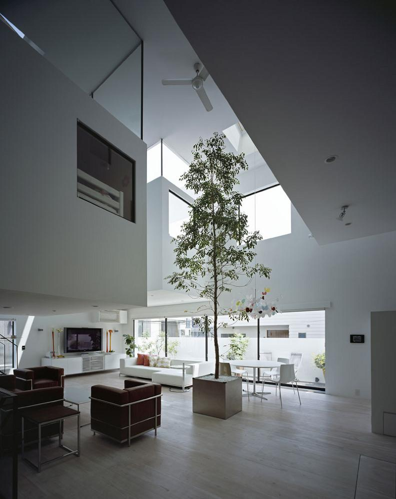 big tall tree in living room Want to See a Lamborghini in a Living Room?
