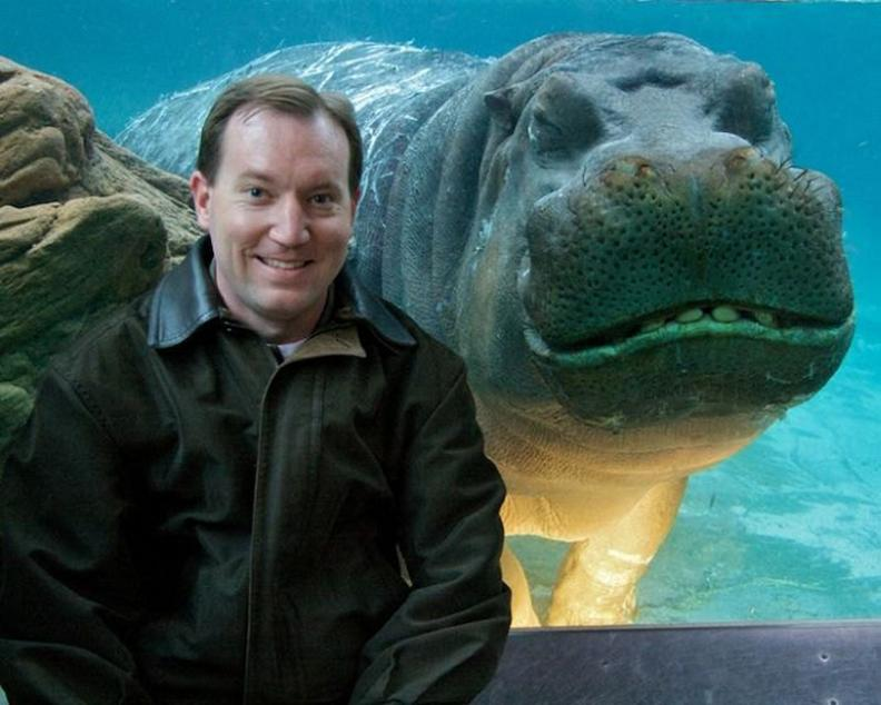 funny hippo photobomb smiling Picture of the Day   April 24, 2010