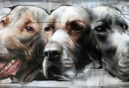 Awesome Street Art by Best Ever