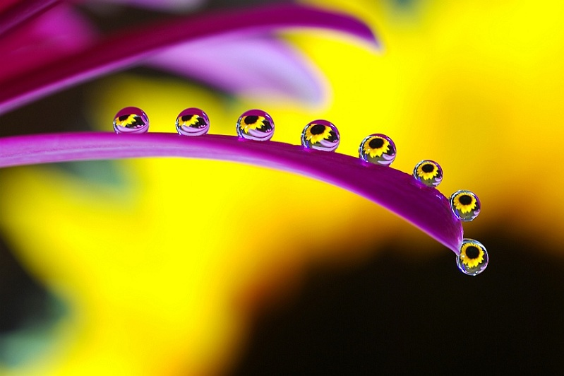 Picture of the Day: Droplet Like It's Hot