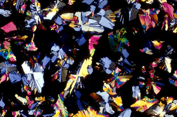 gin magnified image Alcoholic Art: Liquor Under a Microscope
