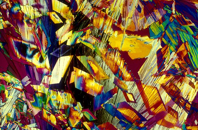 microscopic image of beer japanese rice lager Alcoholic Art: Liquor Under a Microscope