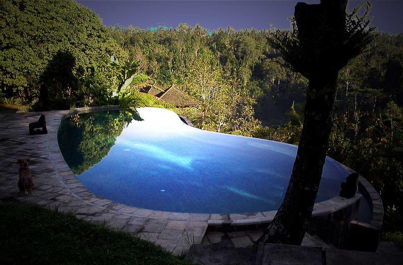 murnis-villa-ubud-bali-infinity-pool