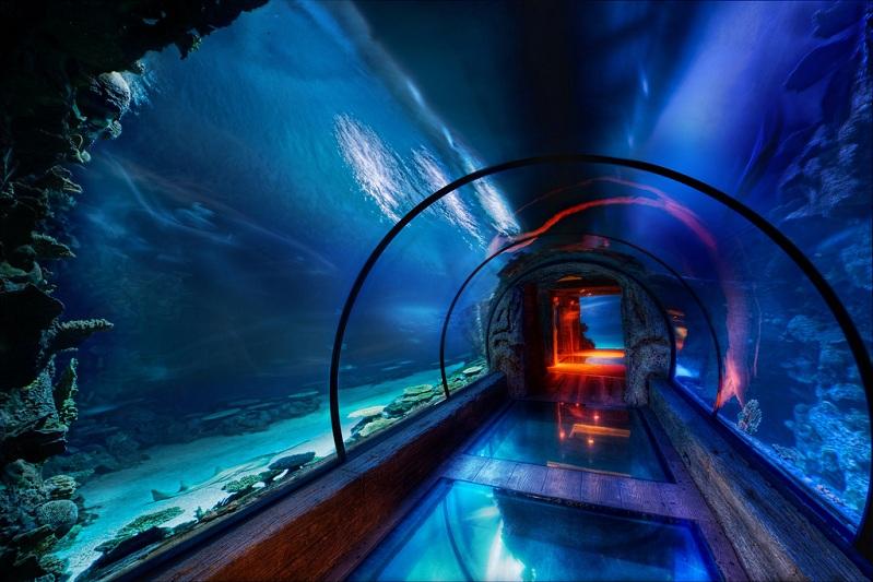 The Secret Underwater Passage
