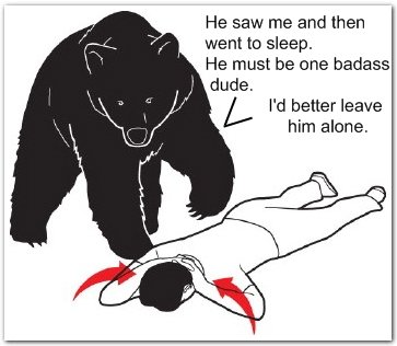 what bear thinks when humans play dead The Friday Shirk Report   July 9, 2010 | Volume 65