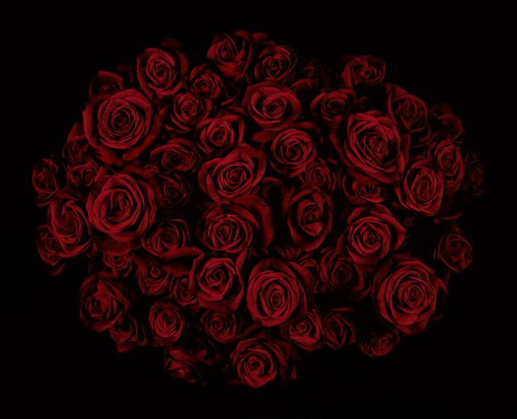dark-red-roses-bouquet