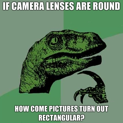 philosoraptor cameras 20 Burning Questions with the Famous Philosoraptor
