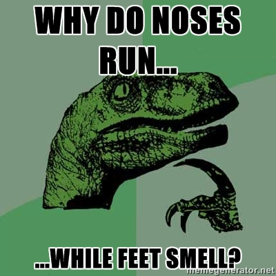 philosoraptor noses run feet smell 20 Burning Questions with the Famous Philosoraptor