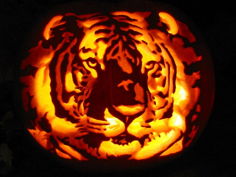 tiger pupmpkin carving 25 Mind Blowing Halloween Pumpkins