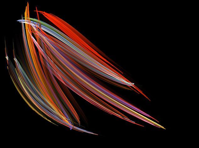 michael stringer pleurosigma marine diatoms 200x Winners (07 10) from Nikons Small World Competition [20 pics]
