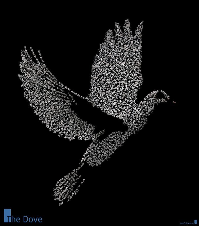 dove word art juan osborne The Wonderful Word Art of Juan Osborne [20 pics]