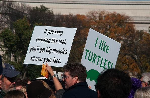 i like turtles funny protest sign 25 Funniest Protest Signs of 2010
