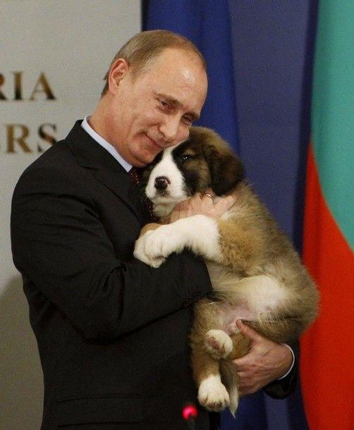 putin hugging dog The Friday Shirk Report   December 3, 2010 | Volume 86
