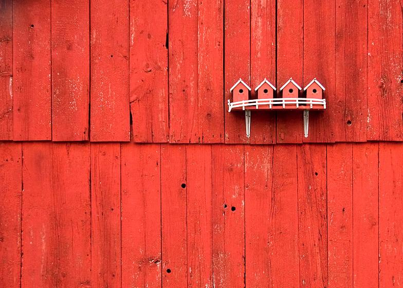 red birdhouses on red barn The Flickr Color Exploration Series: RED