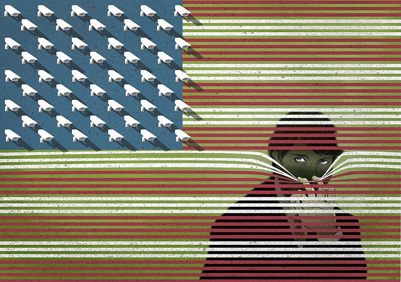 usa flag cameras blinds will varner Picture of the Day: Big Brother is Watching You