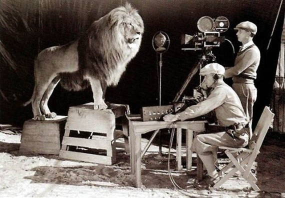 shooting the mgm lion logo in 1924 Picture of the Day: Shooting the MGM Logo, 1924