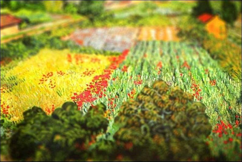 tilt shift van gogh field with poppies painting Amazing Tilt Shift Van Gogh Paintings [16 Pics]