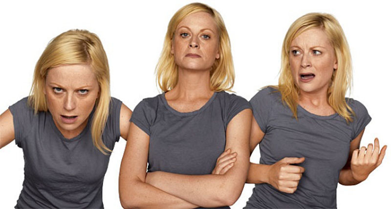 amy poehler acting in character  Funny Faces: Famous Actors Acting Out [20 Pics]