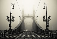 Picture of the Day: Into the Fog
