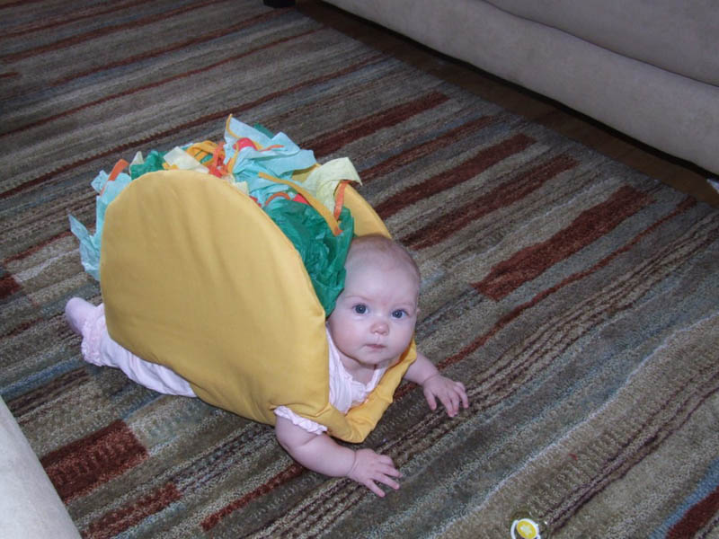 baby wearing a taco costume taco belle Picture of the Day: Taco Belle