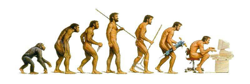 evolution to sitting in front of computer This Day In History   May 25th
