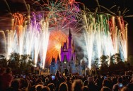 Picture of the Day: Lights, Camera, Action at the Magic Kingdom