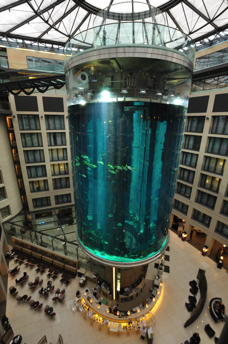 aquadom berlin germany biggest freestanding aquarium in the world Picture of the Day: Worlds Largest Free Standing Aquarium