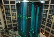 Picture of the Day: World's Largest Free-Standing Aquarium