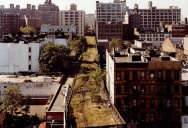 The High Line: New York's Park in the Sky [25 pics]