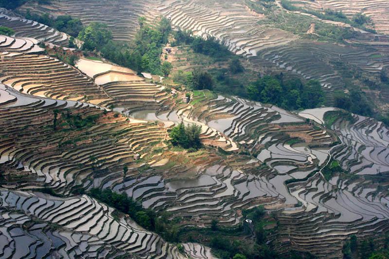 rice terraces 15 25 Unbelievable Photographs of Rice Terraces