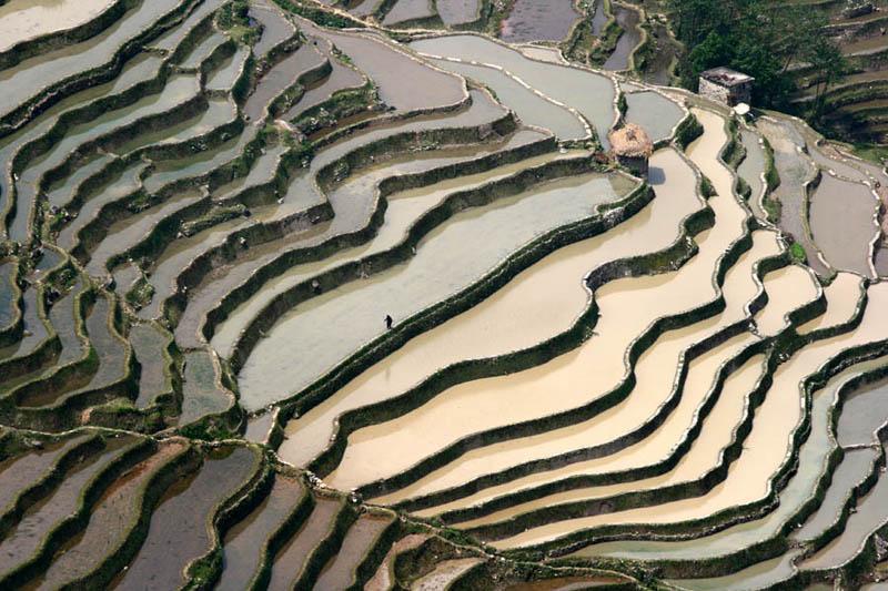rice terraces 17 25 Unbelievable Photographs of Rice Terraces