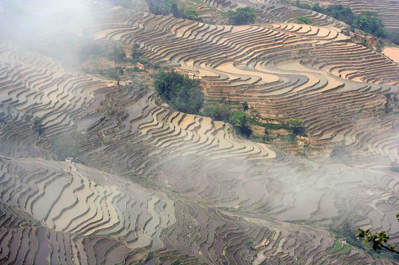 rice terraces 18 25 Unbelievable Photographs of Rice Terraces
