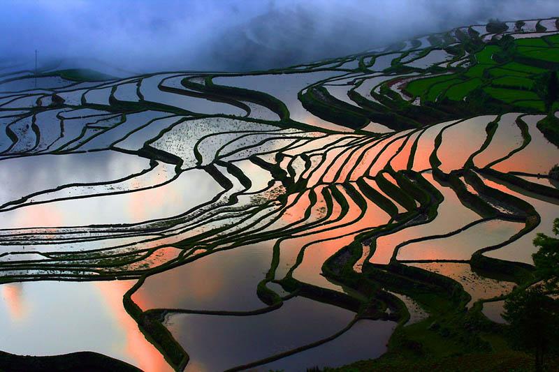 rice terraces 19 25 Unbelievable Photographs of Rice Terraces