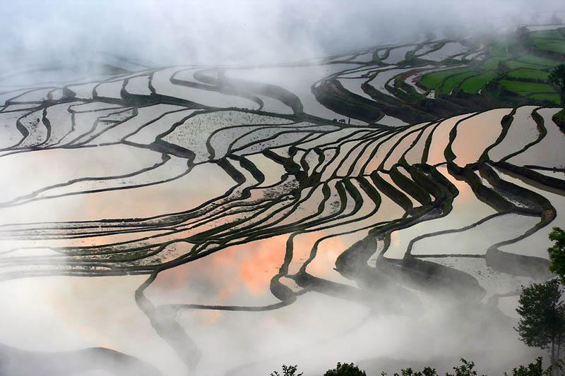 rice terraces 23 25 Unbelievable Photographs of Rice Terraces