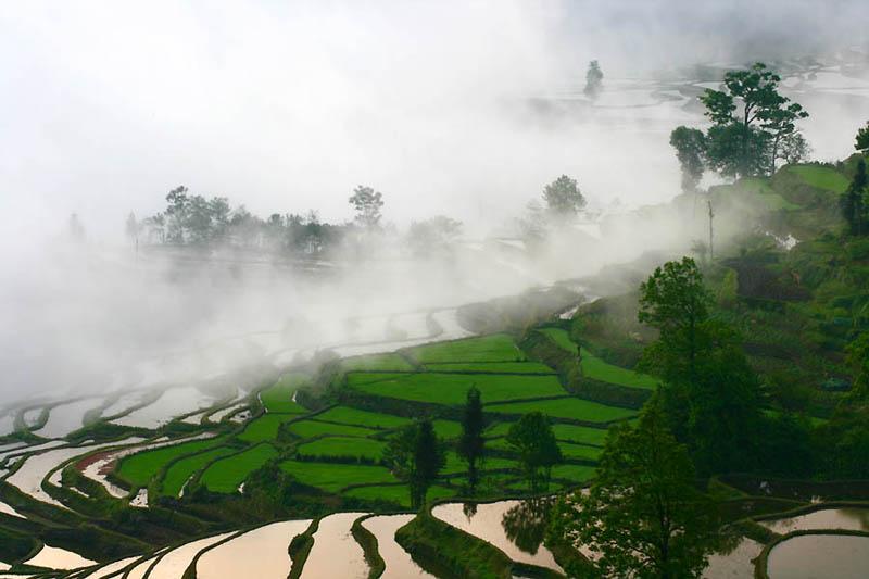 rice terraces 25 25 Unbelievable Photographs of Rice Terraces