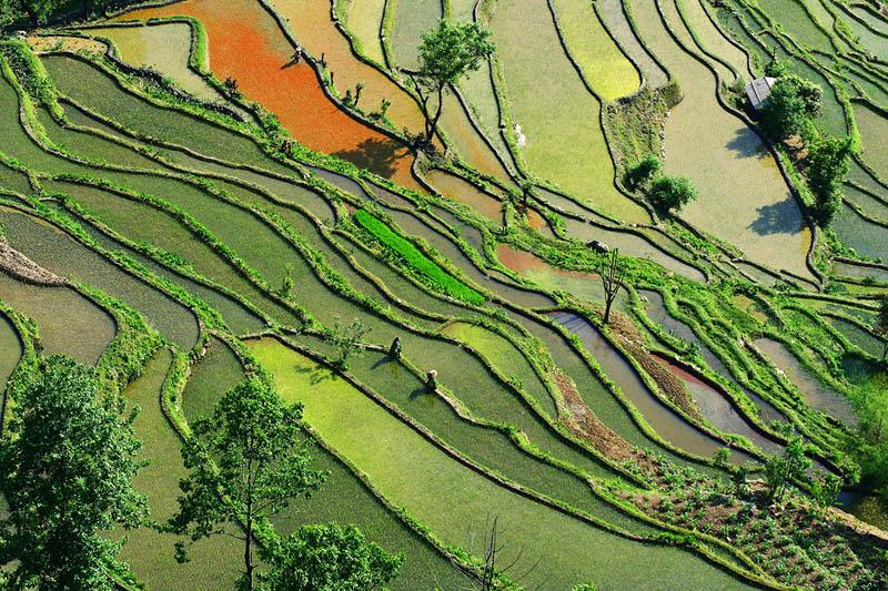 rice terraces 3 25 Unbelievable Photographs of Rice Terraces