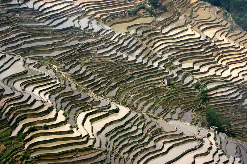 rice terraces 9 25 Unbelievable Photographs of Rice Terraces