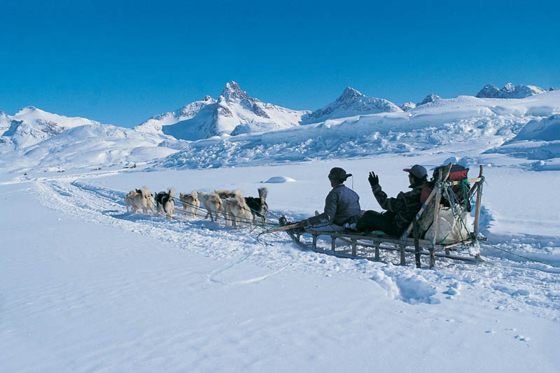 greenland dogsledding 10 Things You Didnt Know About Greenland