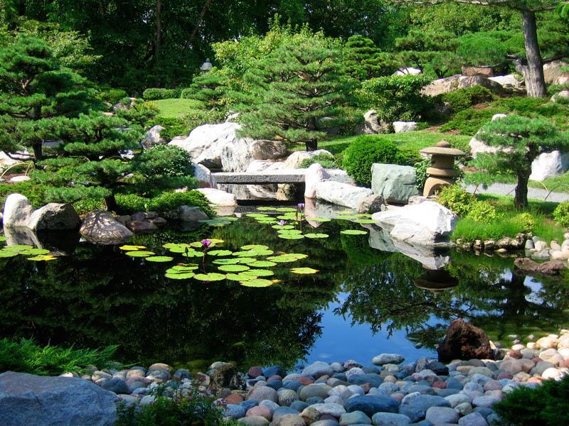 japanese garden at como park conservatory 20 Stunning Japanese Gardens Around the World