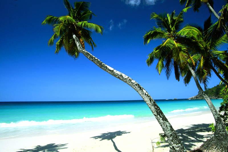 seychelles 22 The Stunning Beauty of Seychelles [25 pics]