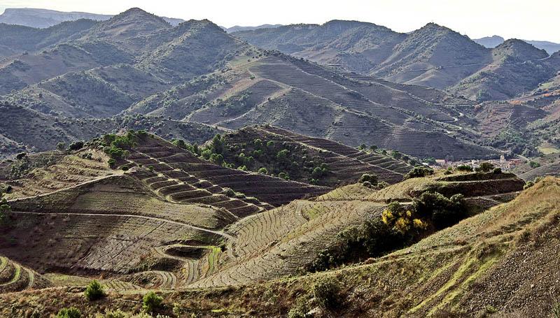 porrera priorat county catalonia 35 Gorgeous Vineyards Around the World
