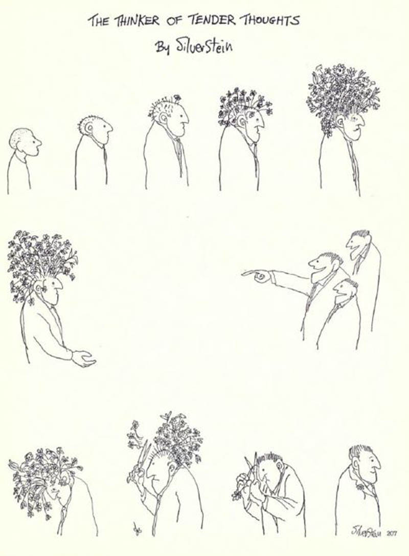 the thinker of tender thoughts by shel silverstein comic flower hair cut The Thinker of Tender Thoughts [Comic Strip]