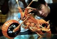 Lobster Shell Motorcycle Art