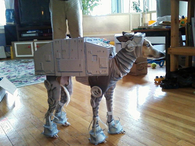 at at dog hilarious halloween costume 25 Hilarious Halloween Costumes from the Weekend
